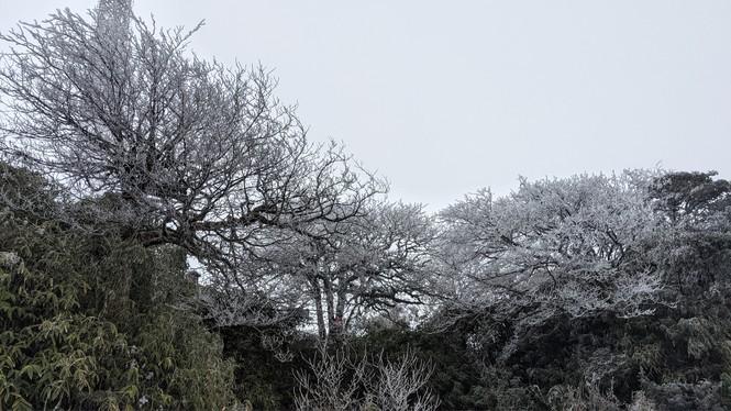 Băng giá phủ trắng một số nơi ở vùng núi phía Bắc, team săn tuyết lên đường ngay thôi! - ảnh 4