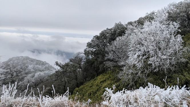 Băng giá phủ trắng một số nơi ở vùng núi phía Bắc, team săn tuyết lên đường ngay thôi! - ảnh 14