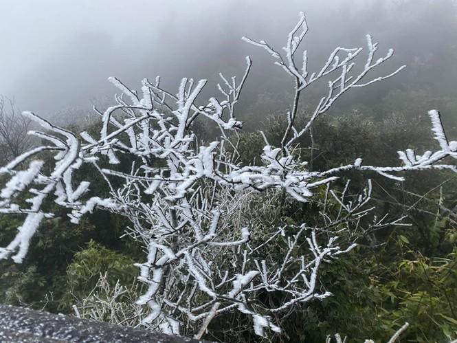 Băng giá phủ trắng một số nơi ở vùng núi phía Bắc, team săn tuyết lên đường ngay thôi! - ảnh 15