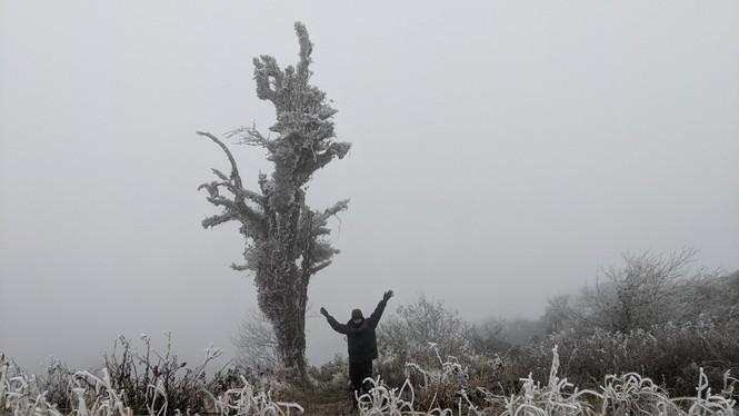 Băng giá phủ trắng một số nơi ở vùng núi phía Bắc, team săn tuyết lên đường ngay thôi! - ảnh 9