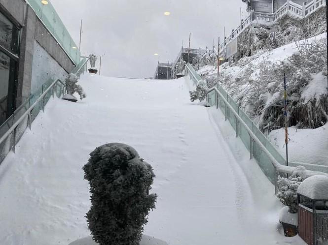 Tuyết rơi phủ dày trên đỉnh Fansipan (Lào Cai), khung cảnh đẹp tựa như phim cổ trang  - ảnh 7