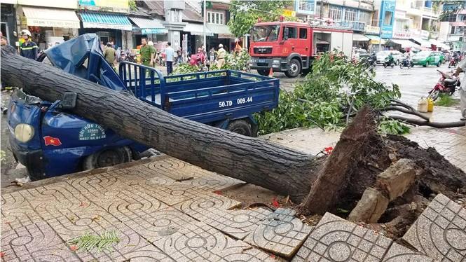 Giông lốc làm cây ngã khắp Sài Gòn, đè bẹp ô tô, lốc mái nhà dân - ảnh 3