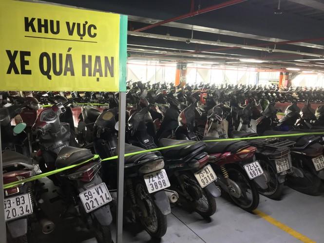Hàng trăm xe máy 'nằm vạ' nhiều năm ở sân bay Tân Sơn Nhất - ảnh 2
