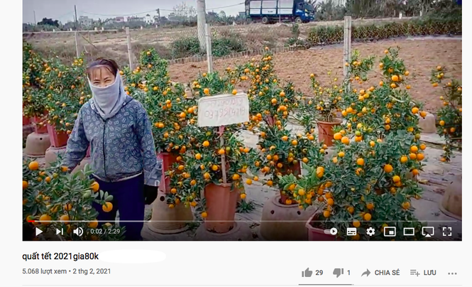 Tiểu thương đua nhau livestream rao bán cây lạ, hoa đẹp - ảnh 2