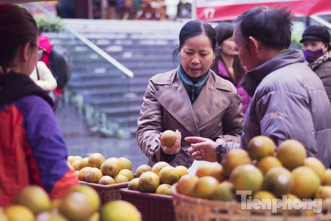 Người Hà Nội đội mưa rét đi chợ ở… bảo tàng - ảnh 4