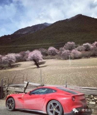 Cưỡi Ferrari 20 tỉ trên cung đường nguy hiểm nhất Trung Quốc - ảnh 7