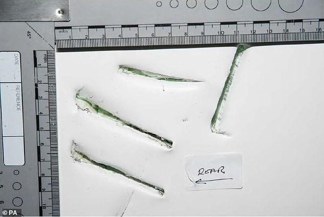 Xót xa dấu vết để lại trên container của 39 người nhập cư Việt tử nạn ở Anh - ảnh 3