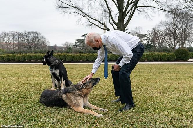 Loạt ảnh hiểm về cuộc sống trong Nhà Trắng của Tổng thống Joe Biden - ảnh 2