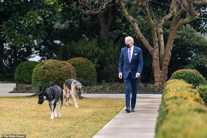 Loạt ảnh hiểm về cuộc sống trong Nhà Trắng của Tổng thống Joe Biden - ảnh 1