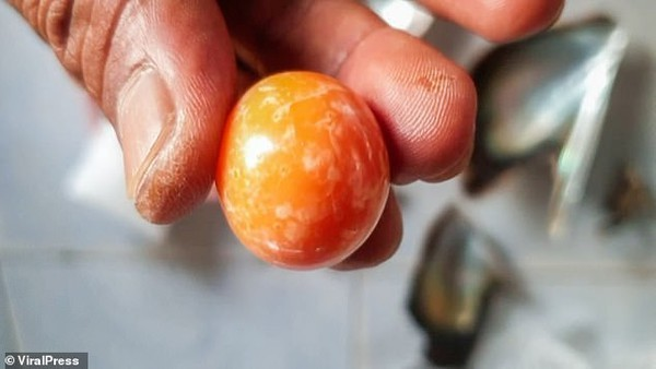 Bite on a billion orange pearl while eating a boiled snail - photo 6