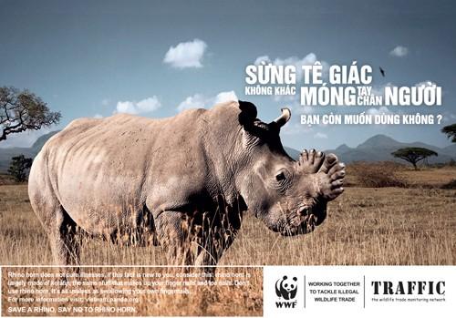 sừng tê giác giả săn trộm buôn bán động vật hoang dã - ảnh 2