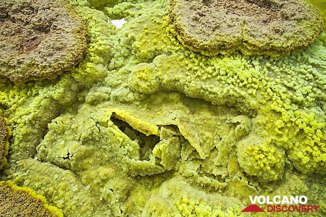 Dallol núi lửa ao mặn axit suối nước nóng không có vi sinh vật Ethiopia - ảnh 7
