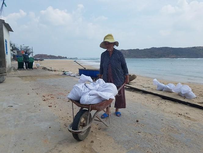 Bình Định lên phương án di dời hơn 1000 hộ dân trước dự báo bão đổ bộ - ảnh 1