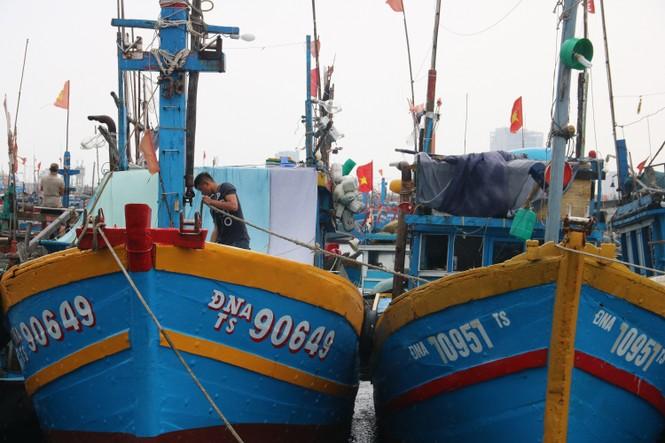Bình Định lên phương án di dời hơn 1000 hộ dân trước dự báo bão đổ bộ - ảnh 3