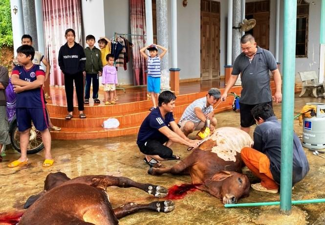 Bình Định: Nhiều xã chìm trong nước lũ - ảnh 4