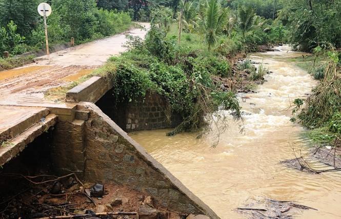 Bình Định: Hơn 1.000 ngôi nhà bị ngập, lũ quét gây sạt lở nhiều nơi - ảnh 1
