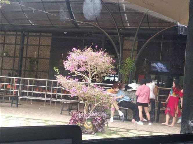 Ninh Dương Lan Ngọc và Chi Dân lộ ảnh đi chơi cùng nhau ở Đà Lạt - ảnh 2