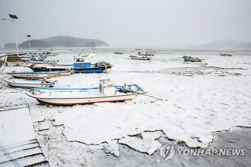 """Hàn Quốc lạnh đến mức sông Hàn hóa """"sân băng"""" khổng lồ, đến biển cũng đóng băng - ảnh 7"""
