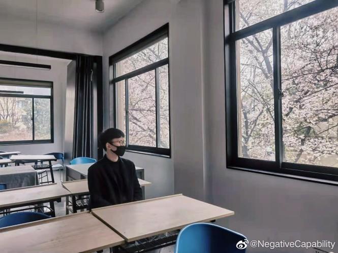 """Xôn xao trước """"lớp học hoa anh đào"""" tại trường Đại học Đông Nam, Trung Quốc - ảnh 5"""