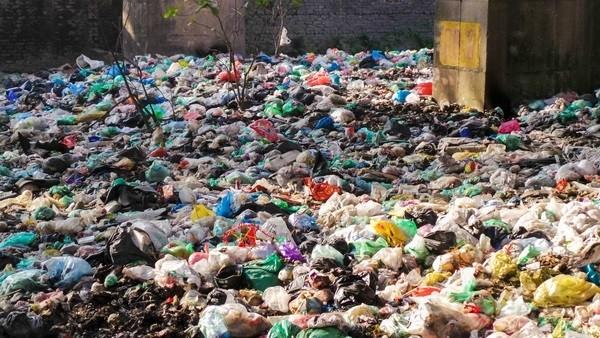 Bãi rác ngập dưới chân cầu Thăng Long là từ đâu? - ảnh 2
