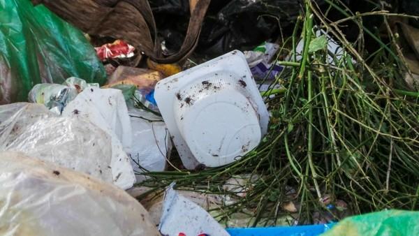 Bãi rác ngập dưới chân cầu Thăng Long là từ đâu? - ảnh 3