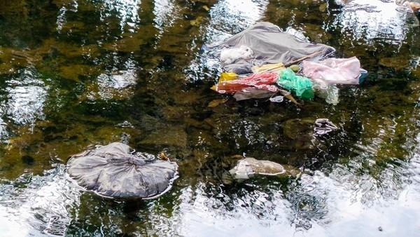 Bãi rác ngập dưới chân cầu Thăng Long là từ đâu? - ảnh 4