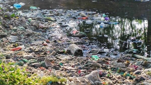 Bãi rác ngập dưới chân cầu Thăng Long là từ đâu? - ảnh 5