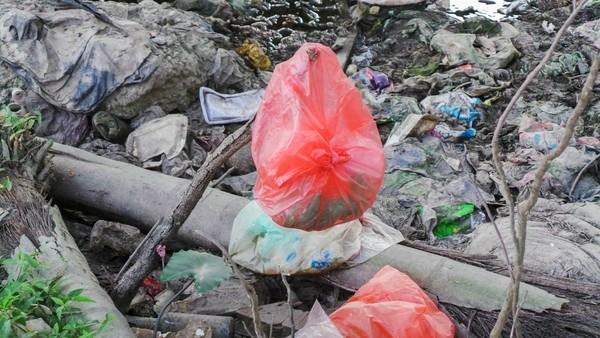 Bãi rác ngập dưới chân cầu Thăng Long là từ đâu? - ảnh 6