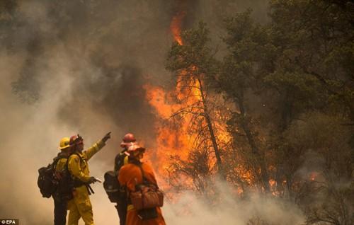 Cháy rừng khủng khiếp ở Mỹ, 13 người thương vong - ảnh 4