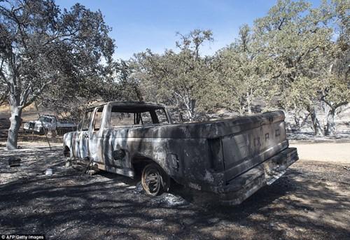 Cháy rừng khủng khiếp ở Mỹ, 13 người thương vong - ảnh 5