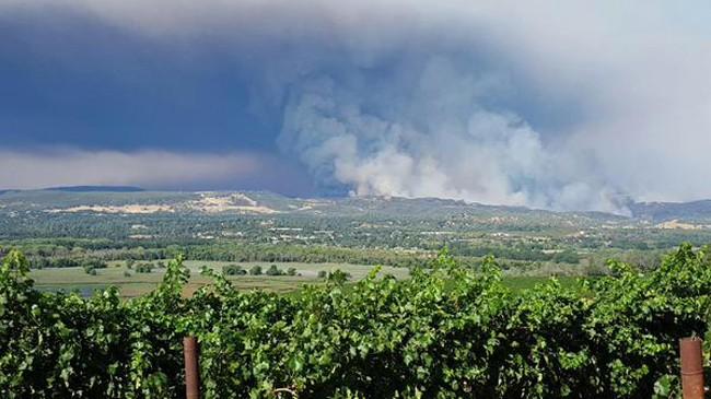Cháy rừng khủng khiếp ở Mỹ, 13 người thương vong - ảnh 2