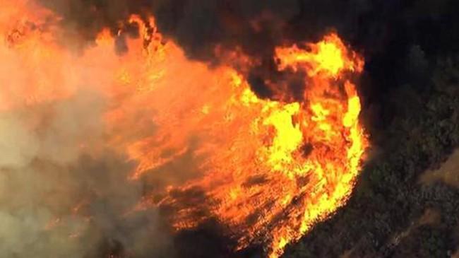 Cháy rừng khủng khiếp ở Mỹ, 13 người thương vong - ảnh 6