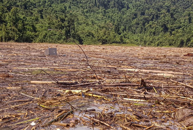 Tìm thi thể nạn nhân vụ sạt lở giữa lòng hồ thuỷ điện dày đặc cây rừng - ảnh 10