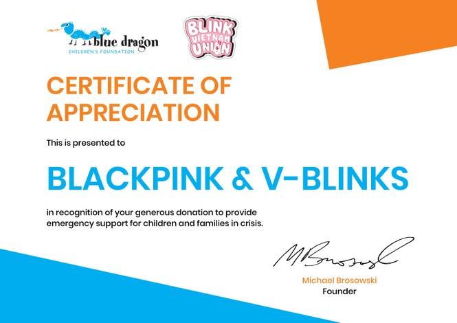 V-Blinks thực hiện dự án ý nghĩa mừng kỉ niệm 4 năm của Blackpink - ảnh 2