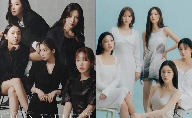 """Có khi nào Irene (Red Velvet) sẽ """"tẩy trắng thành công"""" nhờ gương mặt đẹp hiếm thấy? - ảnh 3"""