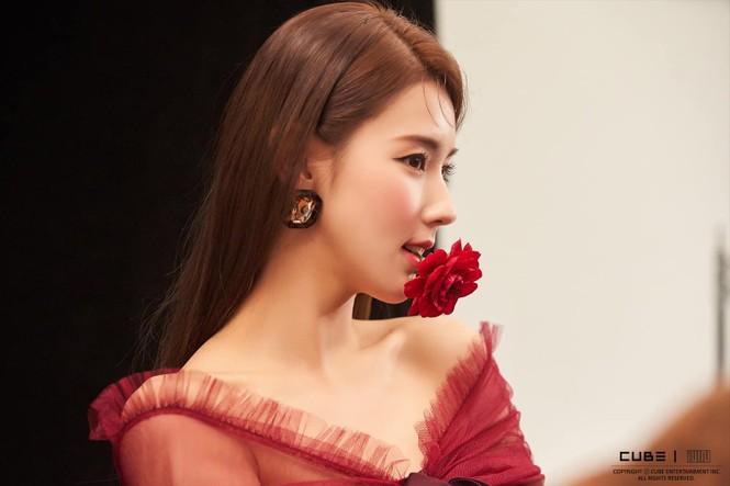 Những mỹ nhân xứ Hàn sở hữu chiếc mũi tự nhiên đẹp đến mức dao kéo cũng bó tay - ảnh 5