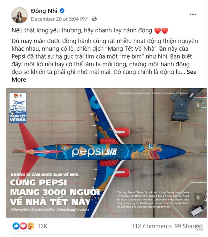 Đằng sau câu chuyện chuyến bay ba màu đang phủ sóng mạng xã hội - ảnh 3