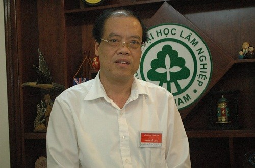Hiệu trưởng Trường Đại học Lâm nghiệp: Chặt đào rừng rất xót xa, lãng phí - ảnh 1