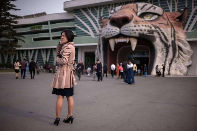 Giữa tâm bão, người dân Triều Tiên vẫn bình thản lạ thường - ảnh 12