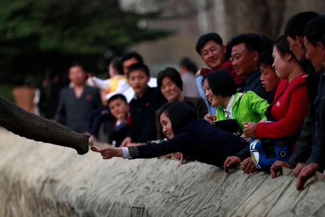 Giữa tâm bão, người dân Triều Tiên vẫn bình thản lạ thường - ảnh 14