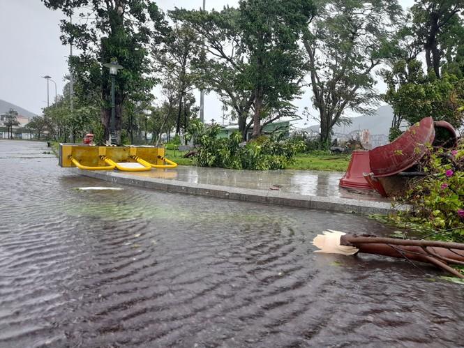 Bão số 9 đổ bộ Quảng Nam - Quảng Ngãi, giật cấp 13 - ảnh 30