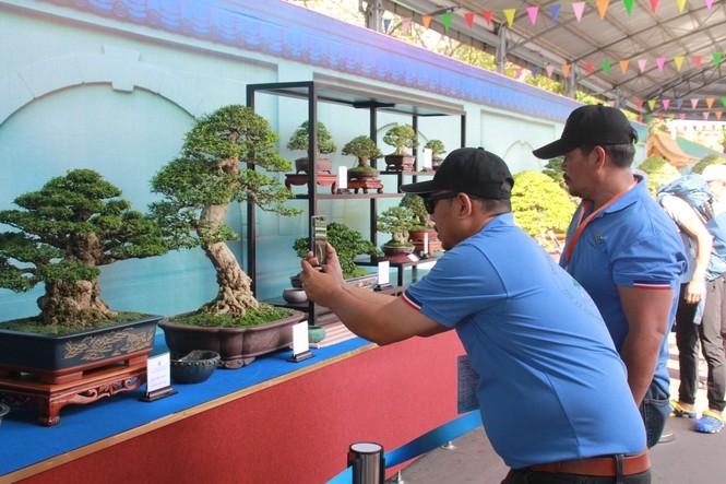 Chiêm ngưỡng các tác phẩm bonsai và đá cảnh nghệ thuật quốc tế hội tụ ở TPHCM - ảnh 4