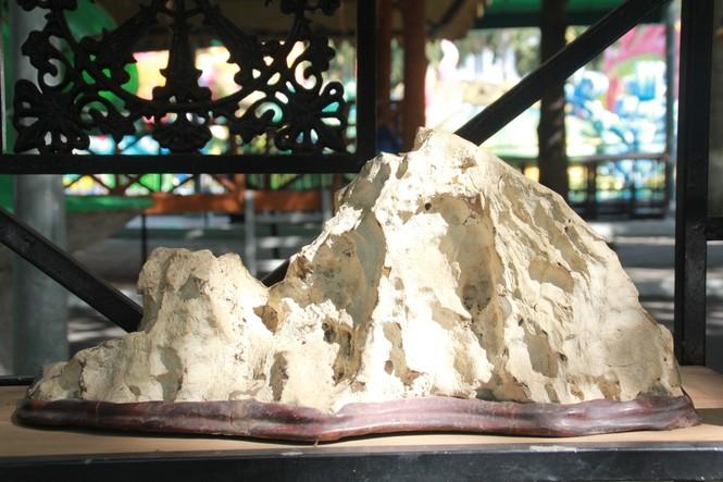 Chiêm ngưỡng các tác phẩm bonsai và đá cảnh nghệ thuật quốc tế hội tụ ở TPHCM - ảnh 23