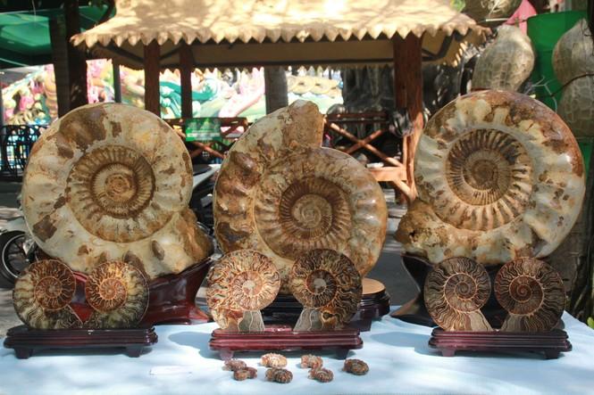Chiêm ngưỡng các tác phẩm bonsai và đá cảnh nghệ thuật quốc tế hội tụ ở TPHCM - ảnh 24