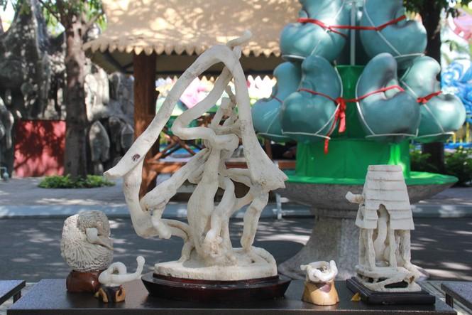 Chiêm ngưỡng các tác phẩm bonsai và đá cảnh nghệ thuật quốc tế hội tụ ở TPHCM - ảnh 25