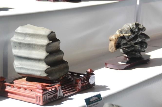 Chiêm ngưỡng các tác phẩm bonsai và đá cảnh nghệ thuật quốc tế hội tụ ở TPHCM - ảnh 26