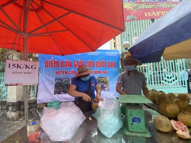 Người dân TPHCM hào hứng giải cứu nông sản Hải Dương - Ảnh 17.