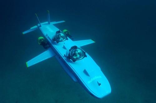 Giới siêu giàu rộ mốt chơi tàu ngầm - ảnh 1