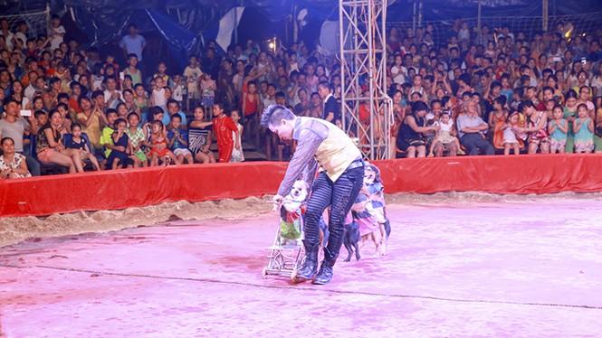 Khán giả thị xã Sơn Tây ùn ùn đội mưa đi xem xiếc lưu động - ảnh 11