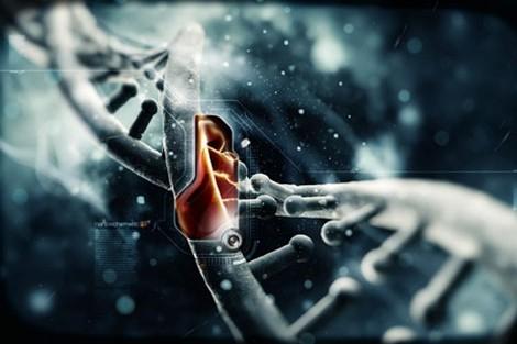 Khoa học thế kỷ 21: Những bí ẩn còn sót lại - ảnh 2
